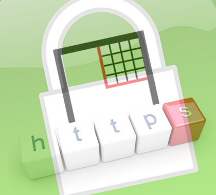 HTTPS protocol